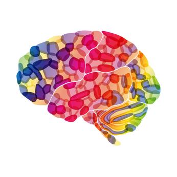 brain-happy-chemicals