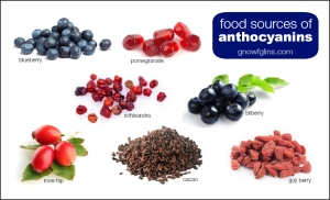 food-sources-anthocyanins-gnowfglins-blue